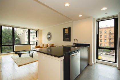 1 bedroom Condo for rent in New York City