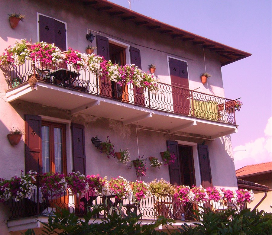 Apartments Near Disney World: Glicine House, Griante, Italy